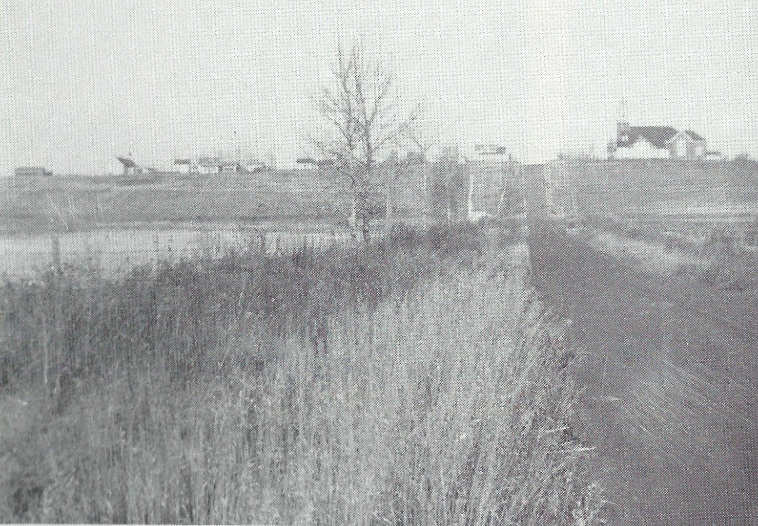 Beaumont-1919